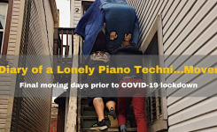The Diary of a Lonely Piano Techni… MOVER?
